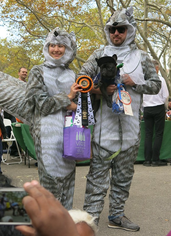Animal Control (First Prize, Fort Greene Pup Costume Parade, 2015)