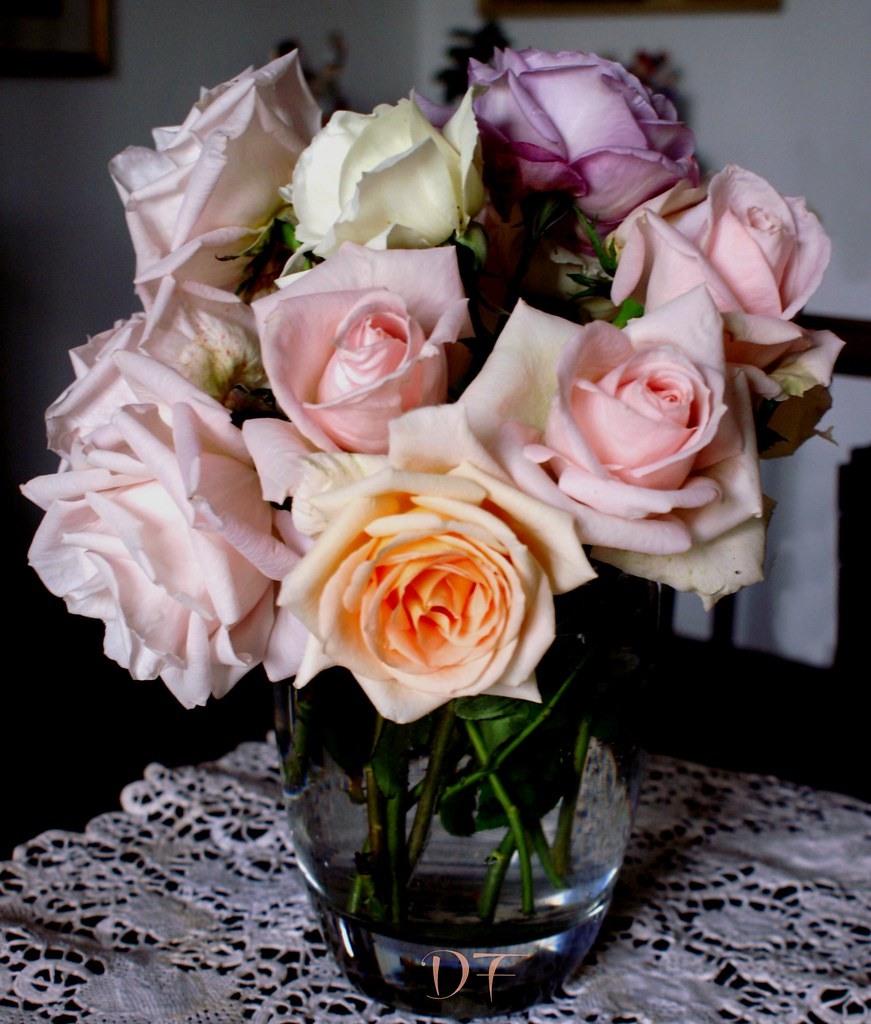 rose a (9)
