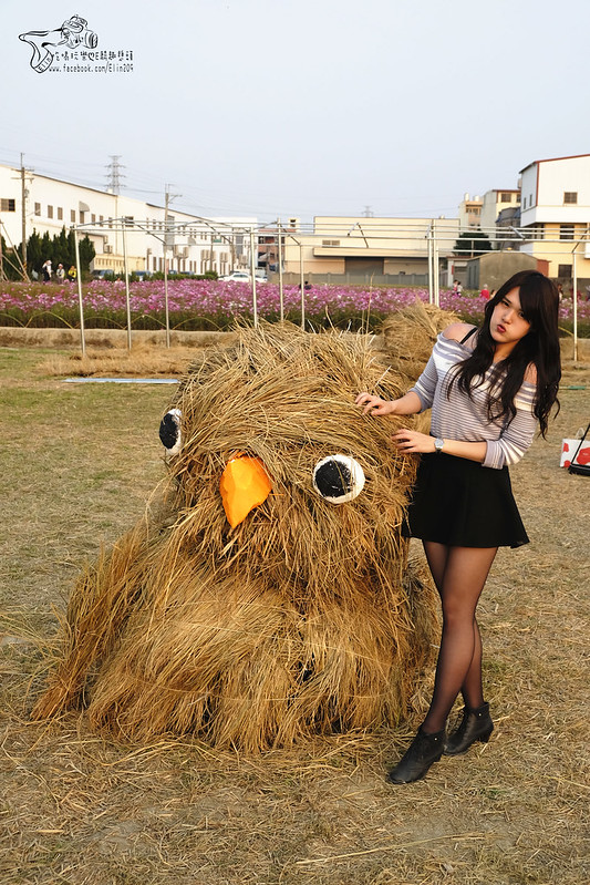 泰安大雅 (25)