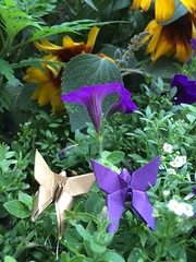 Origami butterflies next to purple flowers and golden sunflowers