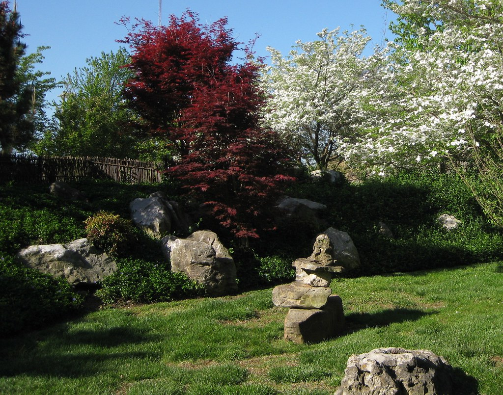 Mizumoto japanese stroll garden april 2015 friends of the garden Mizumoto japanese stroll garden