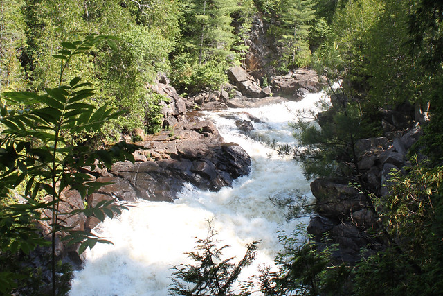 Oxtongue River - Ragged Falls