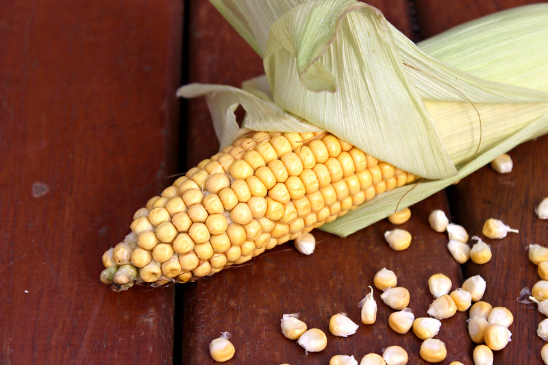 Corn milk 5_copy
