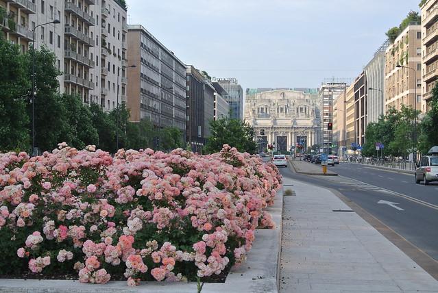 Verso Milano Centrale