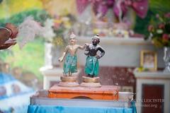 Balarama Jayatni - 20150829_10078
