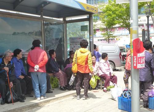 Co-Gyeongju-Côte Est-Gampo (58)