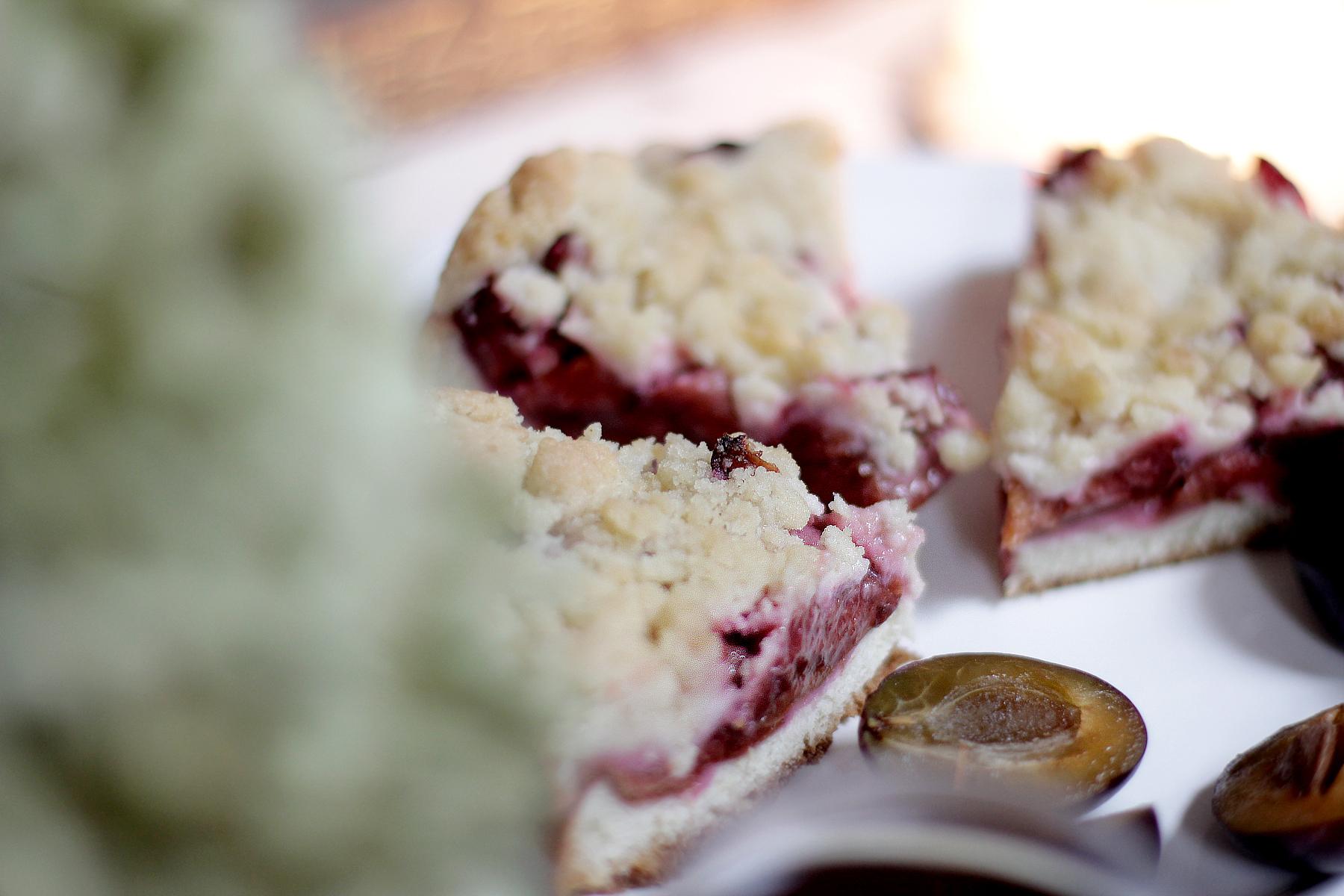 plum cake recipe vegan zwetschgen rezept herbst obst essen kochen selbstgemacht gesund cats & dogs wie hund und katze ricarda schernus 3