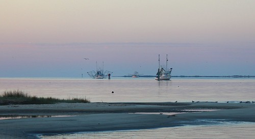 morning autumn sea usa gulfofmexico birds mississippi boats dawn islands october walks unitedstates beaches ripples fishingboats shores sounds seabirds coasts frontbeach oceansprings deerisland barrierislands gulfs mississippisound gulfcoastregion