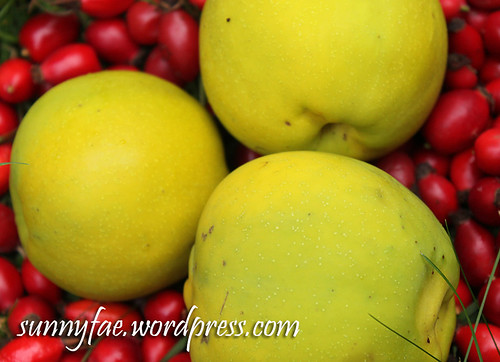 Quince and Rosehips Fruit
