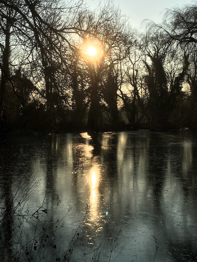 Frozen pond by the hunting lodge Hook to Winchfield walk