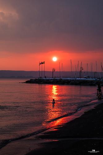 swimming on th sunset