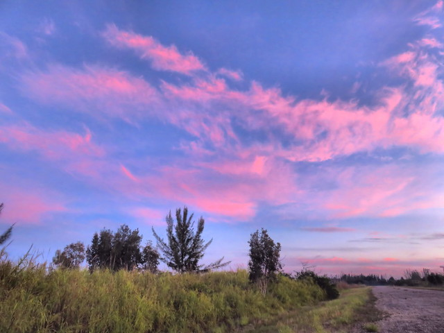 Pink clouds HDR 20150812