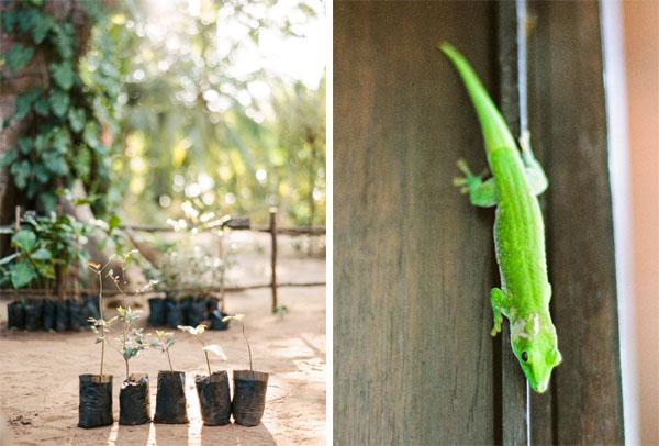 RYALE_Madagascar_Blog3_014