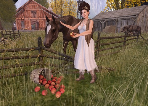 Feeding Mr. Ed an apple -  Lolita Oleander