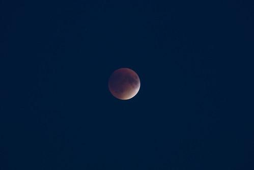 Total Lunar Eclipse (SOTC 178/365)