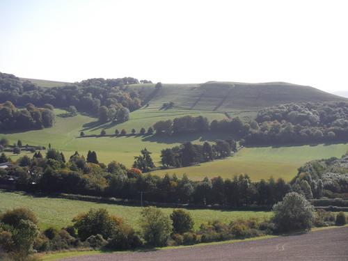 Oare Hill from Huish Hill