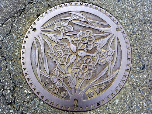 Samukawa Kanagawa, manhole cover (神奈川県寒川町のマンホール)