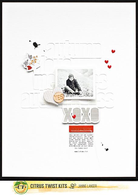 janinelanger-ctk-oct2015-banner-003