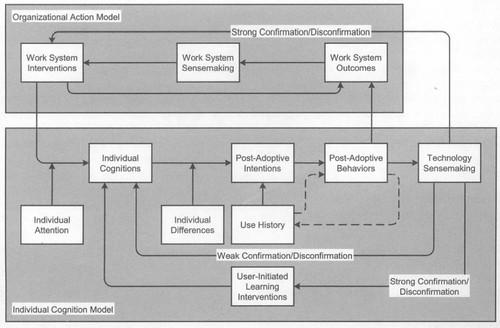 conceptual model of post-adoptive behaviours