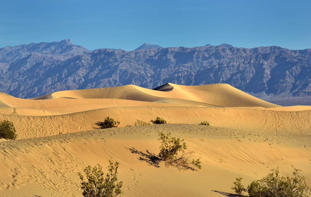 Sand Dunes and Far Off Mountains (Death Valley National Park)
