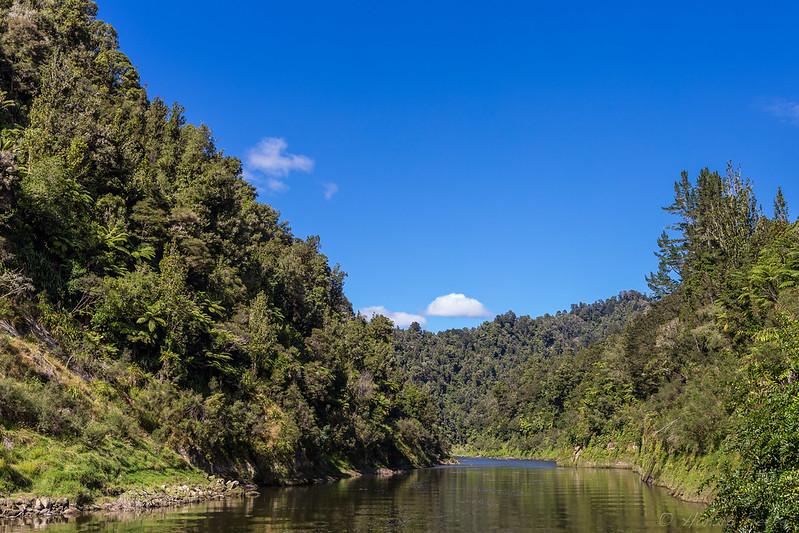Whanganui River Bend