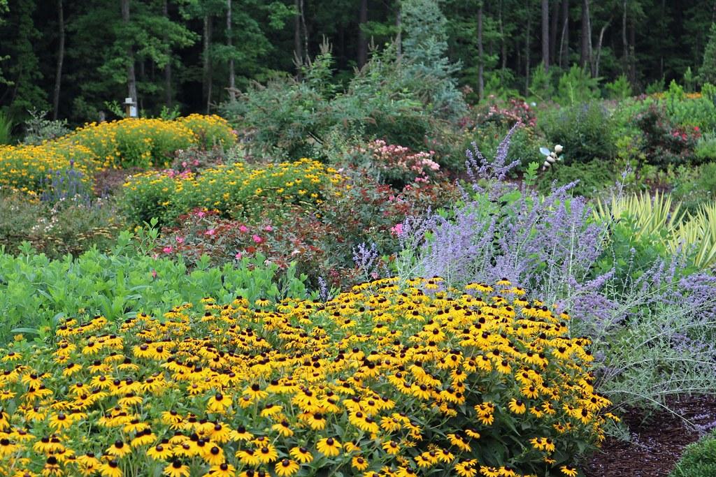 Bayer Bee Care Center, Nancy Ratan, Durham