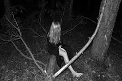 forest erase