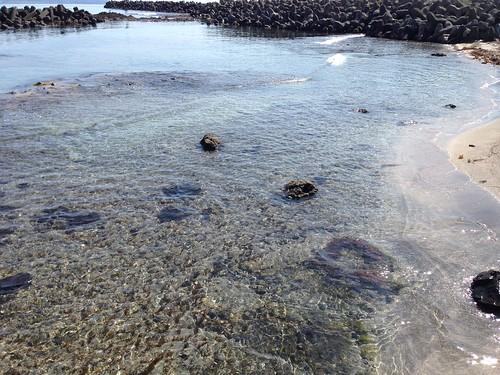 rebun-island-sankaku-beach02