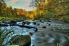 River Rapids by Tom Mortenson