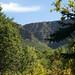 092715-Tonto Creek Hatchery