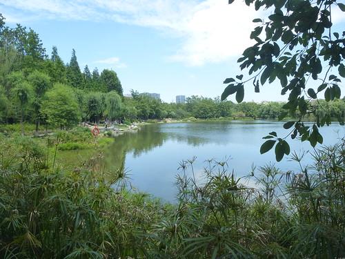 CH-Chengdu-Parc-Huanhuaxi (25)
