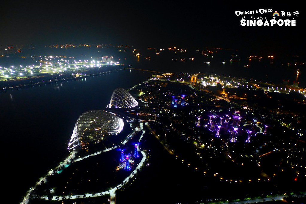 SANDS SKYPARK夜景5