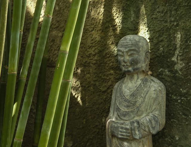 Buddha and bamboo
