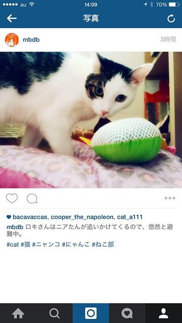 instagram v7.5