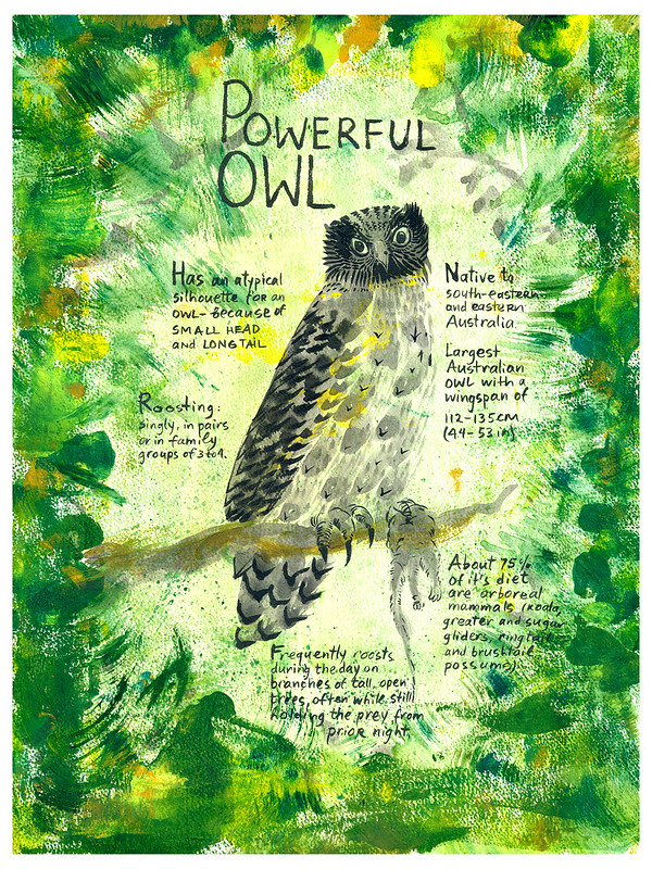 Owls_16_Powerful