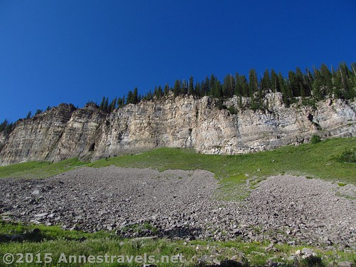 Cliffs above the lower reaches of Upper Darby Canyon, Jedidiah Smith Wilderness Area, Wyoming
