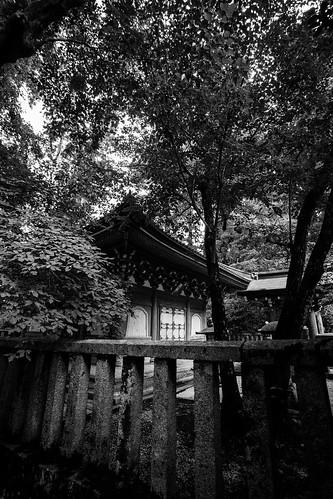 IMG_3049_LR__Kyoto_2015_09_04