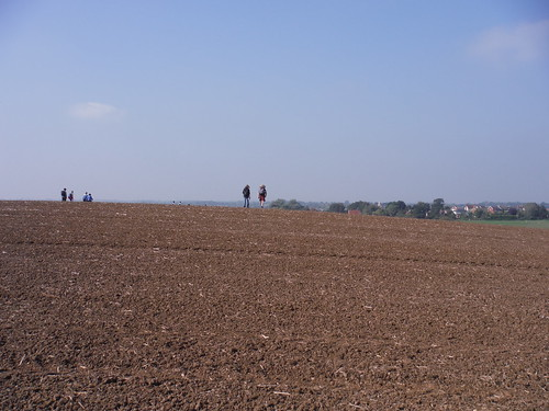 Walkers in Massive Field