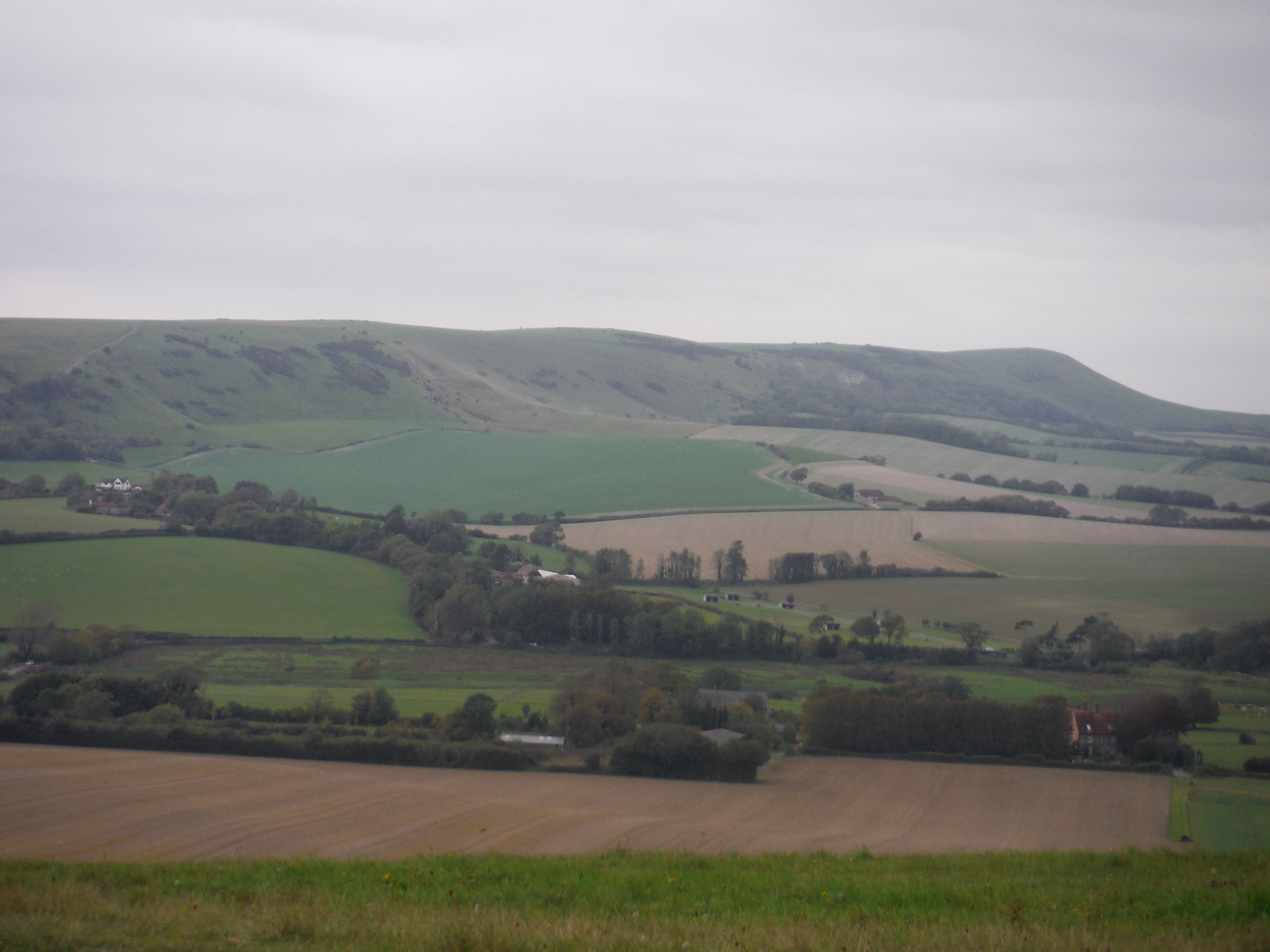 South Downs towards Beddingham Hill SWC Walk 25 - South Downs Way 8 : Southease to Eastbourne