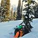 Tree well, stromová díra, je jedno zvelkých rizik kanadských hor. Kolem kmenů sníh sublimuje rychleji atvoří dutiny, když tam člověk spadne po hlavě, není šance dostat se ven, foto: Petr Socha - SNOW