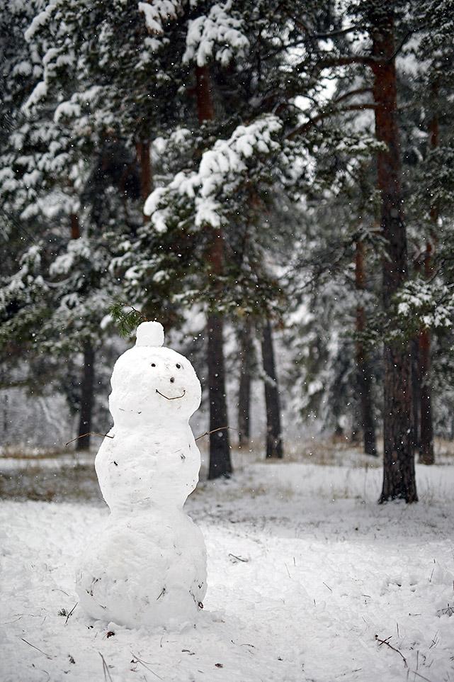 Тёплый снег 8