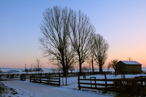 Winter nightfall