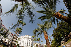 Cannes and French riviera