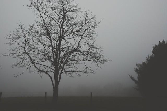 Lost. (HFF)