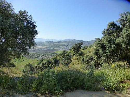 Cortijo Rosario: view over valley
