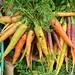 Carrots at Lancashire Market, Preston by Tony Worrall Foto