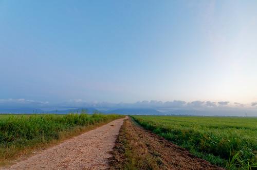 sky cloud mountain nature sunrise dawn outdoor horizon wideangle caribbean ricefield daybreak trinidadandtobago caroni sigma1020mm1456exdchsm nikond5100