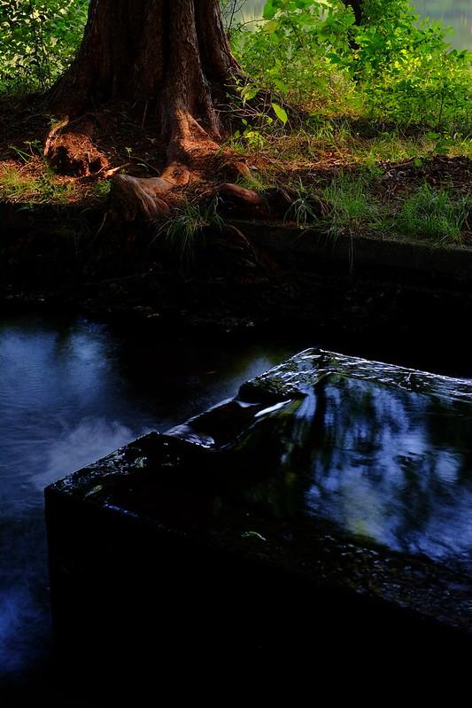 湧水 spring