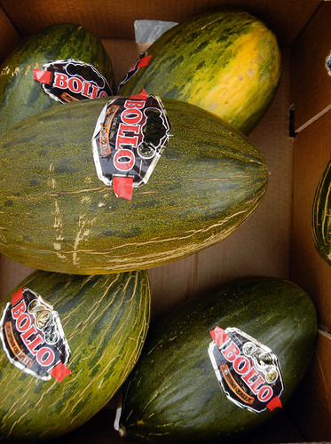 Melons for sale in the Ribadesella market, Spain