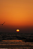 sea and sunsetالبحر والغروب